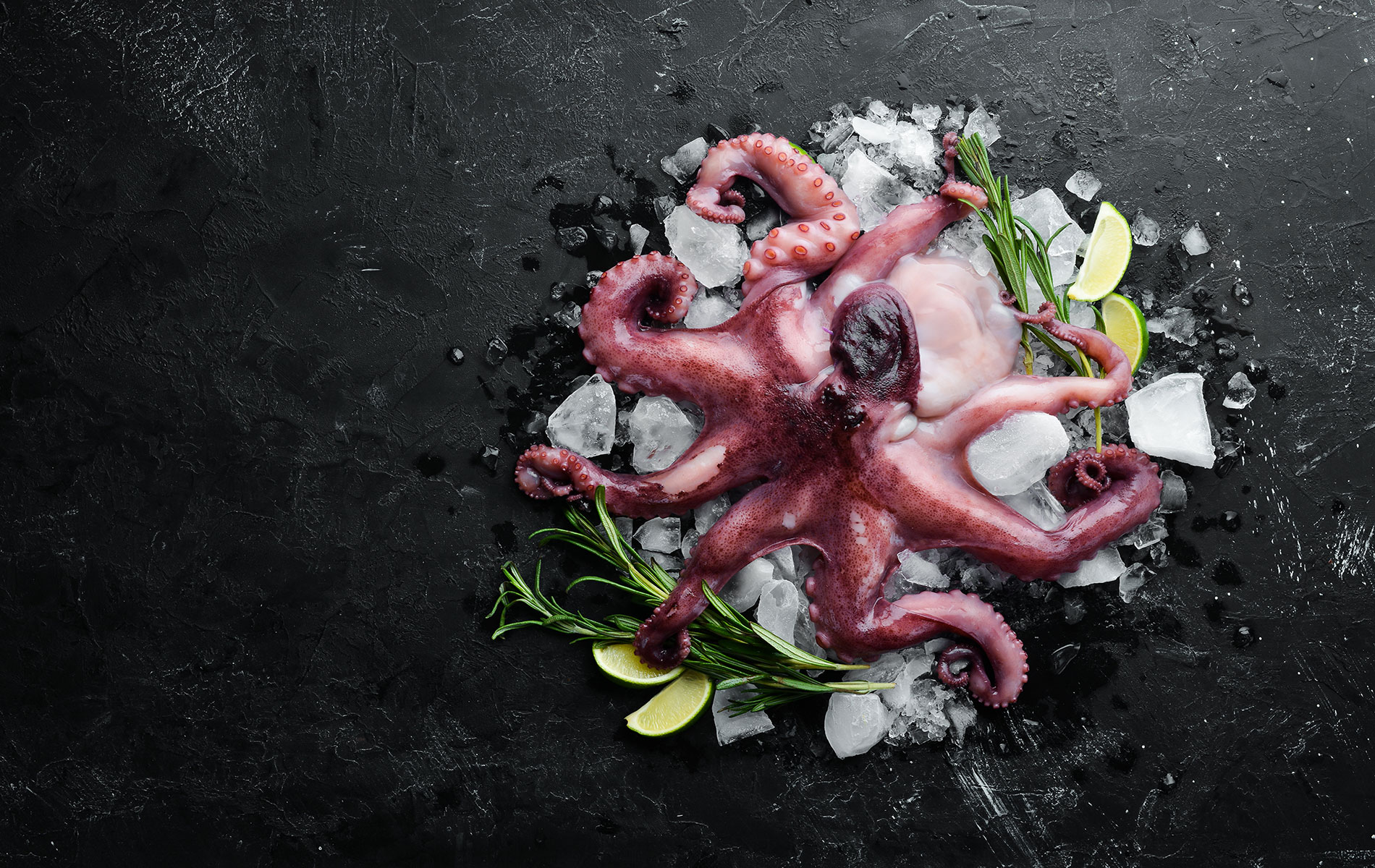 Sword-surgelati-how-to-cook-frozen-octopus
